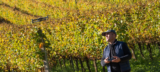 Using a Drone to Monitor a Crop of Grapes