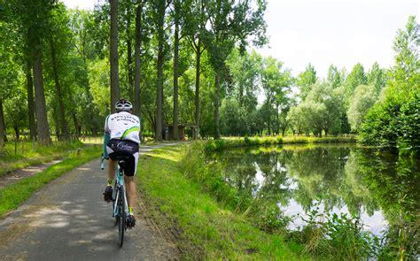 Forest Way .jpg