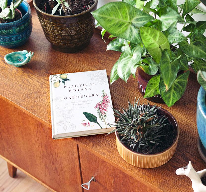 4 must-have plantenboeken.jpg