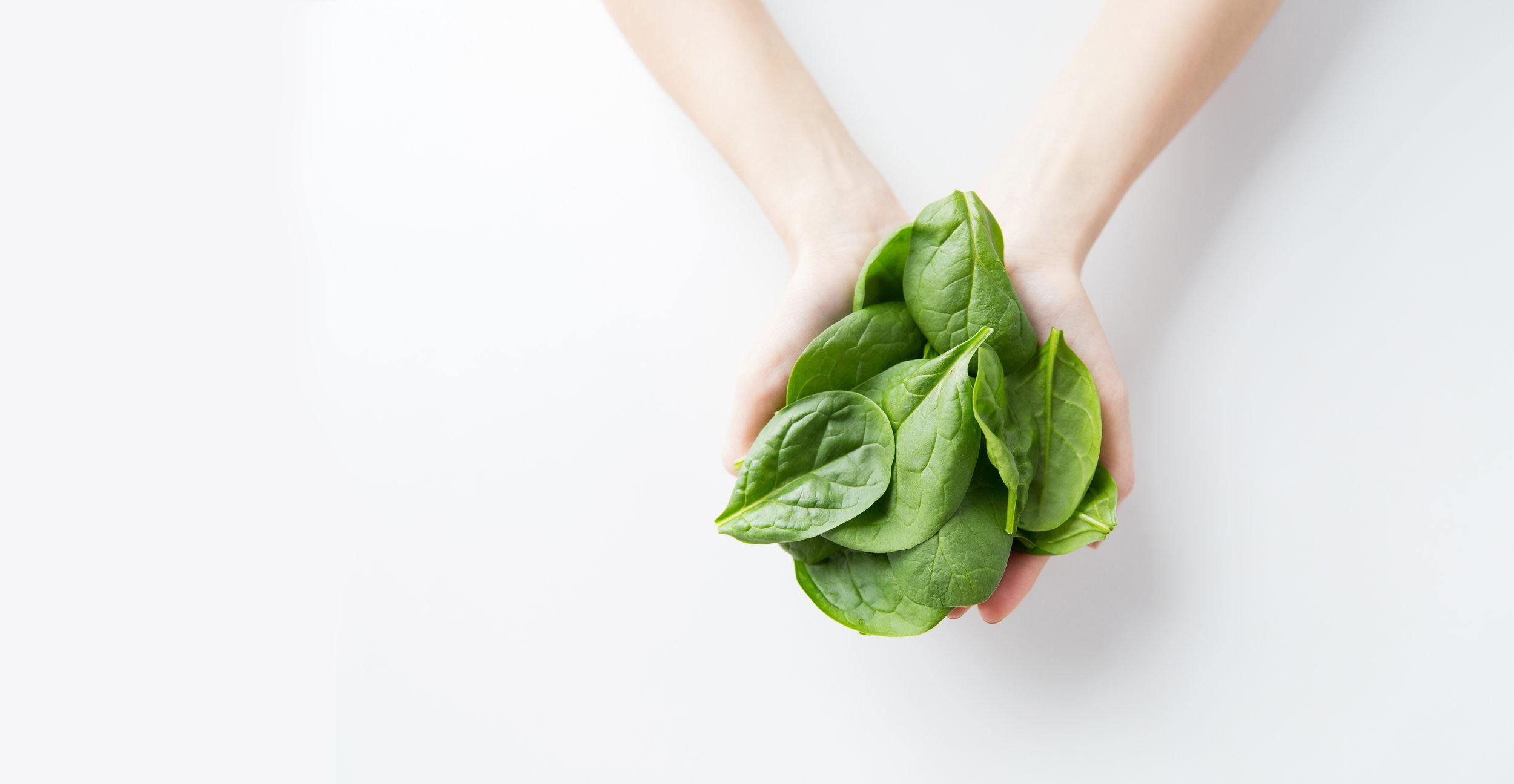 spinach - hands extend.jpg