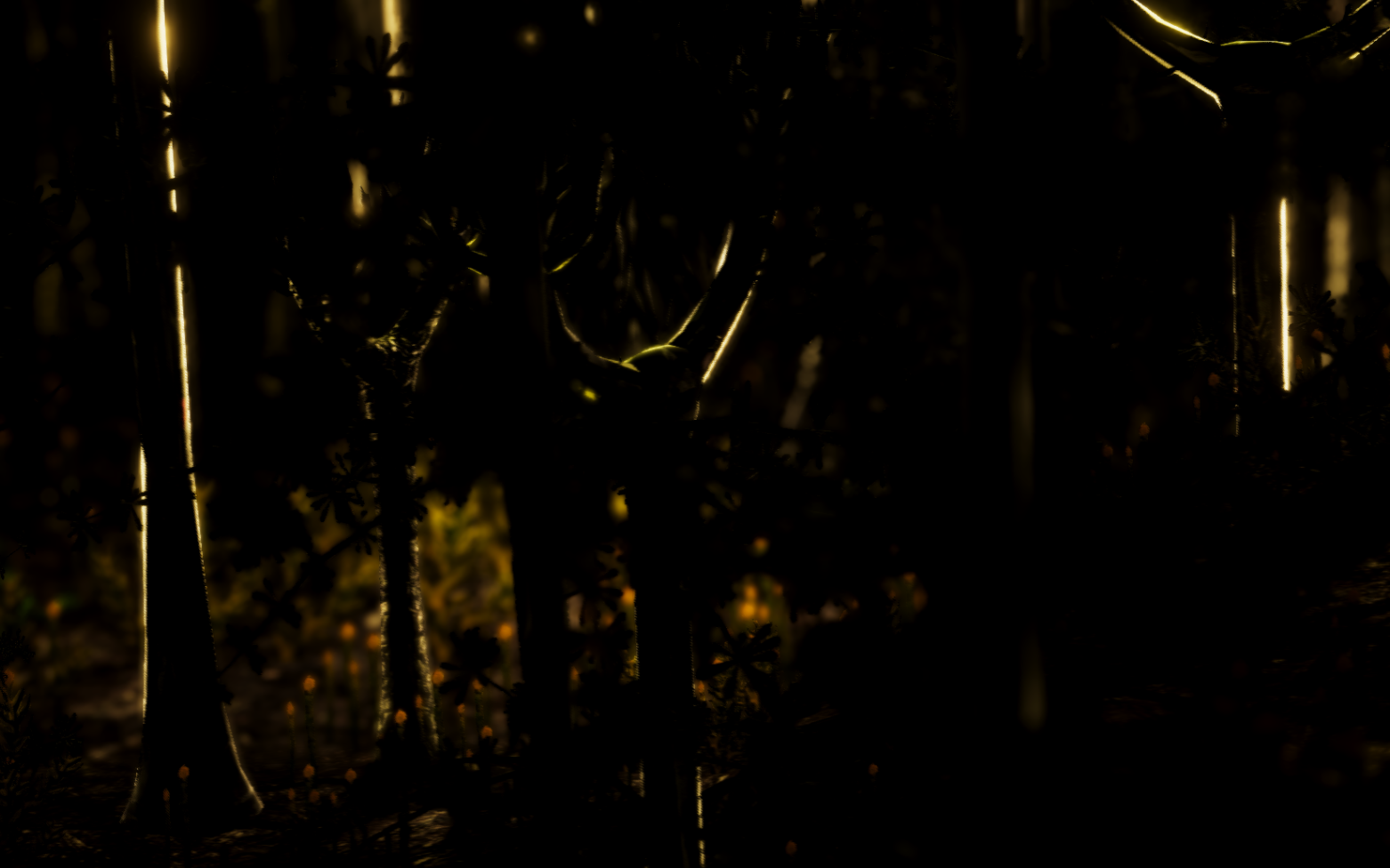 forest cropped.png