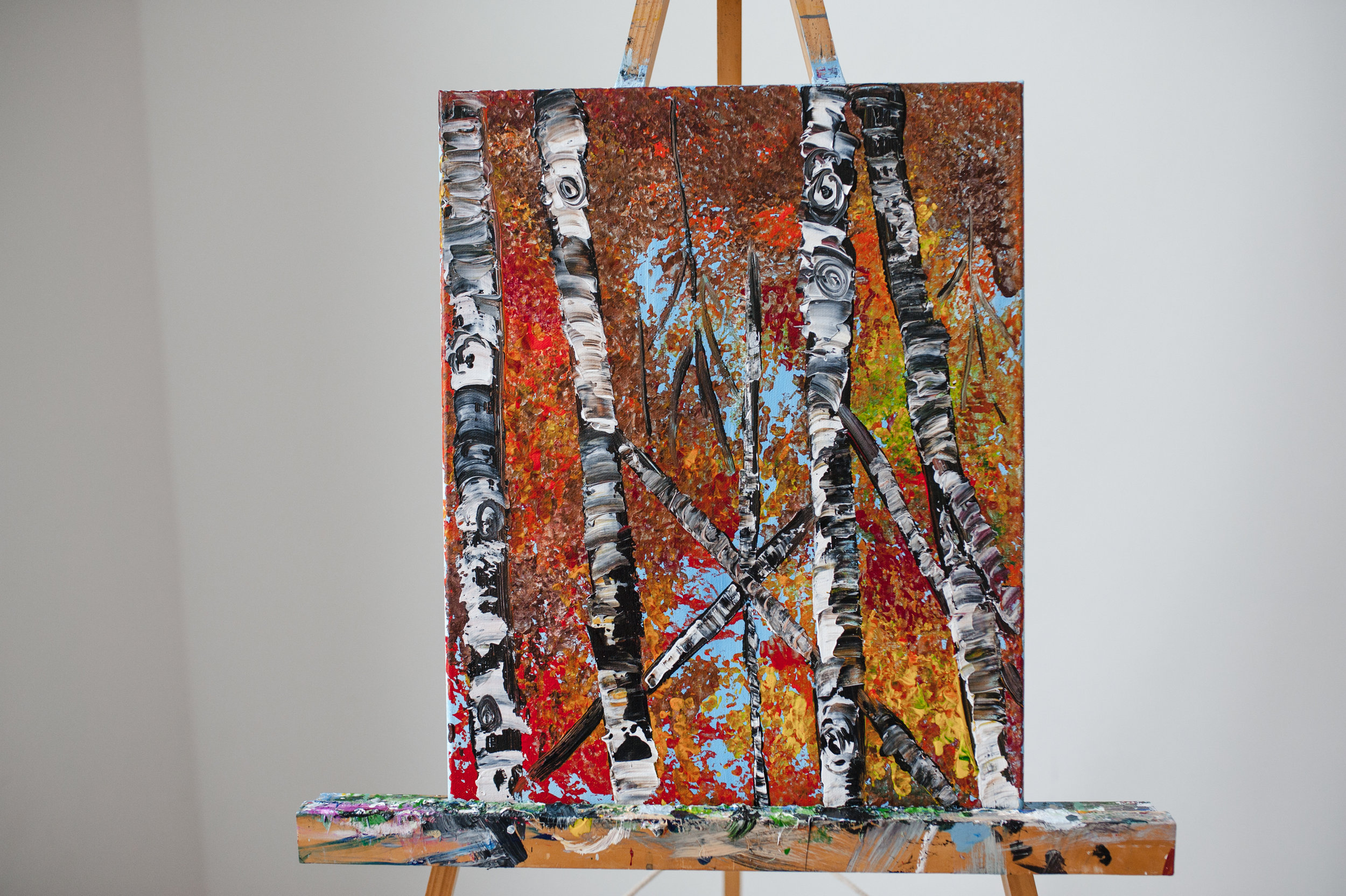 BIRCH TREES @ TAILING LOOP WINERY -
