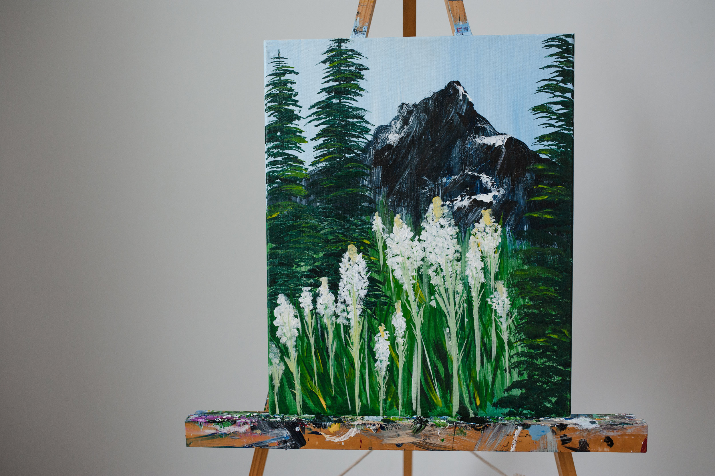 BEARGRASS IN GLACIER -