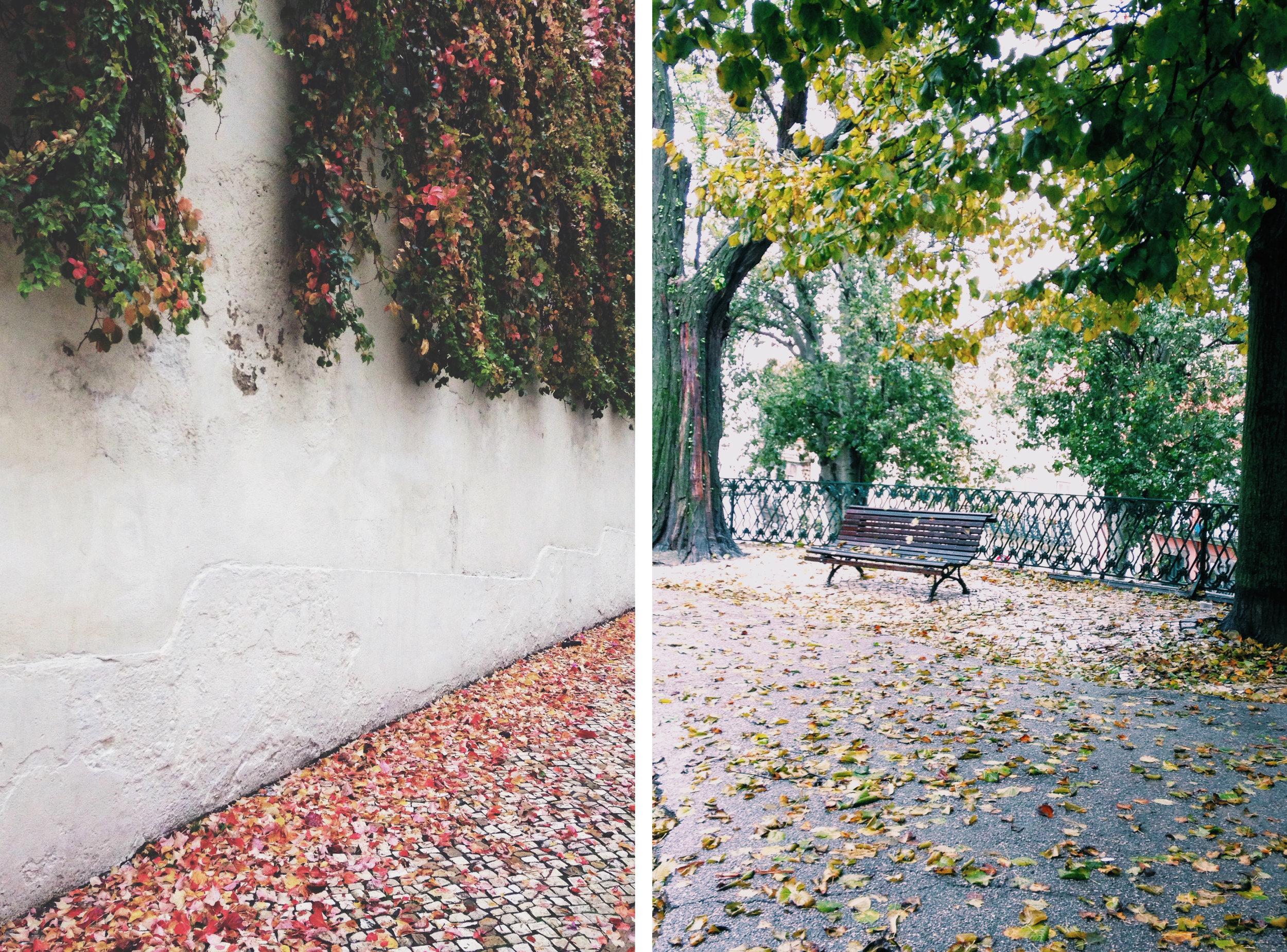 2 imagens.jpg