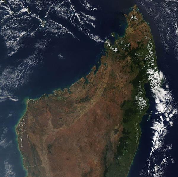MODIS   Provider: NASA / Resolution: 250m /  Tech specs