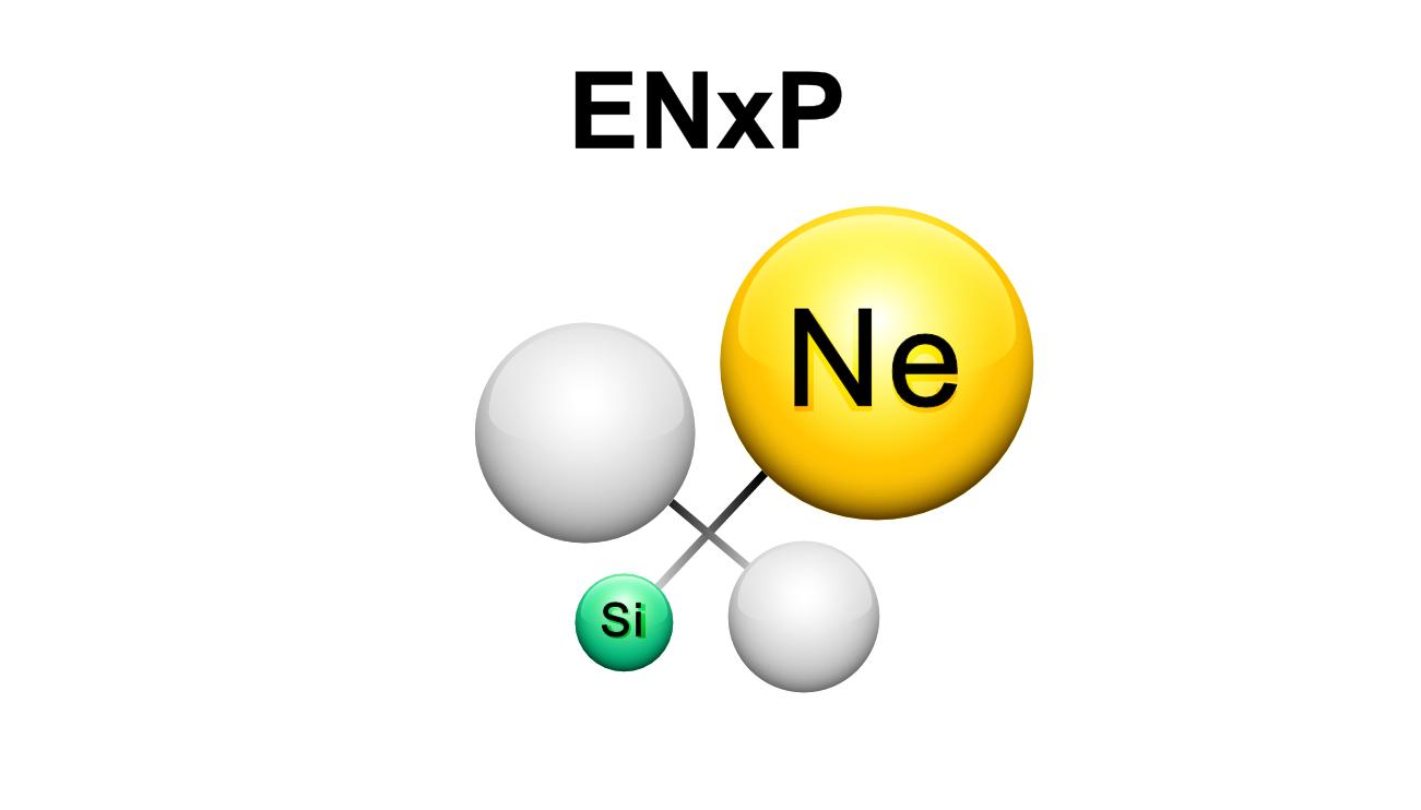 ENxP.jpg