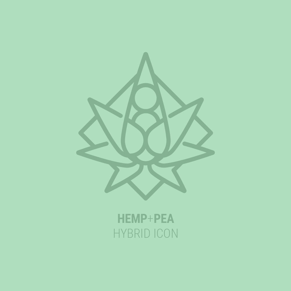Hemp Pea Protein Icon Design