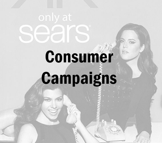 Consumer Campaigns.PNG