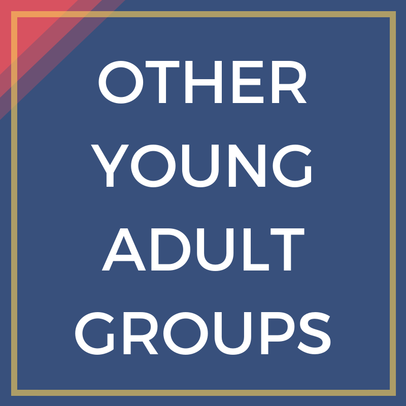 Other Young Adult Groups