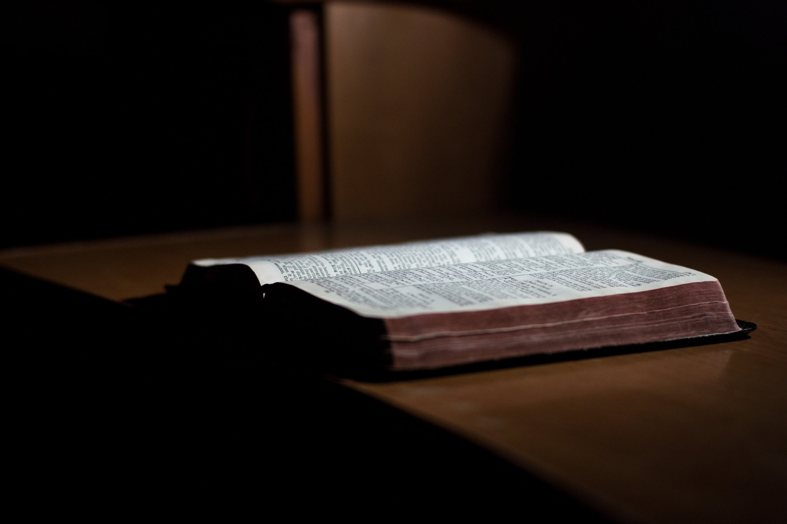 """""""Ignorance of Scripture is ignorance of Christ."""" -St. Jerome"""