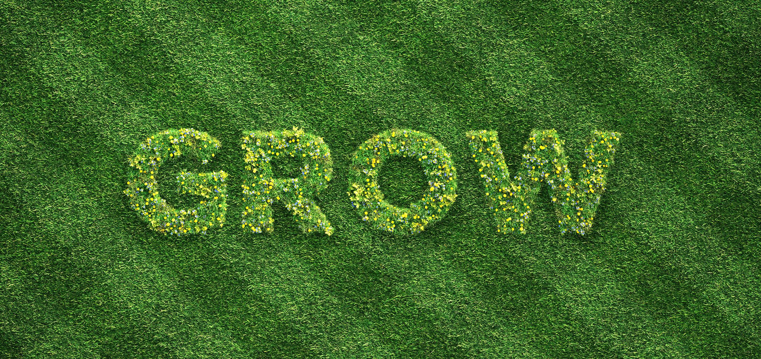 Grow_4K.jpg