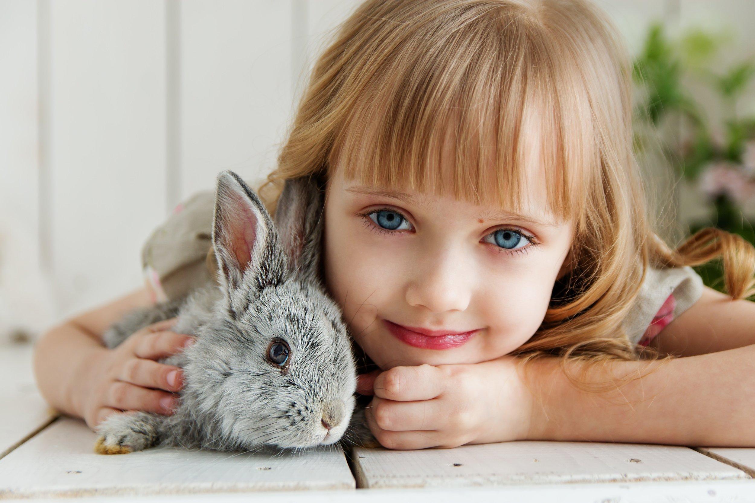 adorable-animal-attractive-1462634.jpg
