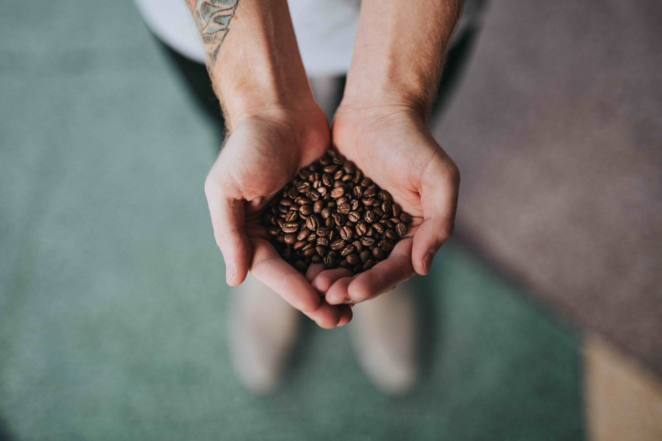 Thanksgiving Coffee B Corp Certification