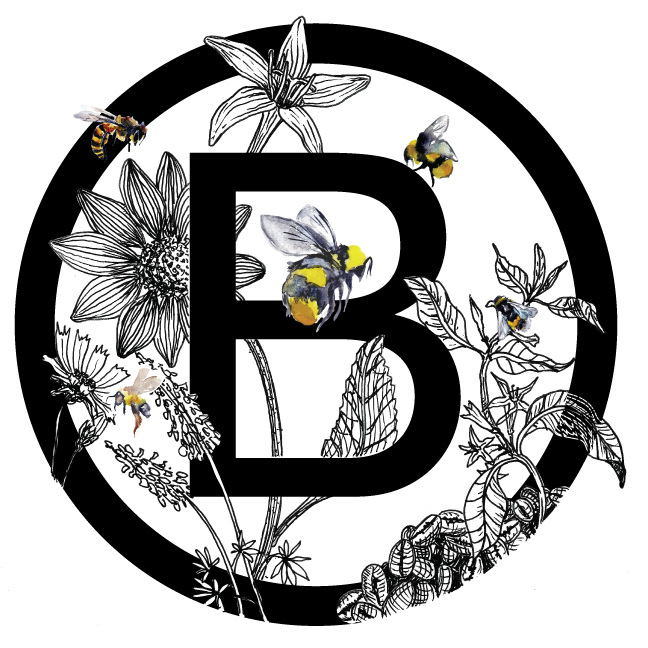 Bee-Illustration-2.jpg