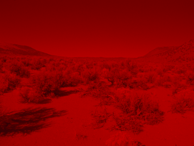 From Laida Lertxundi's film Sunset Red. Source:  CanadianArt