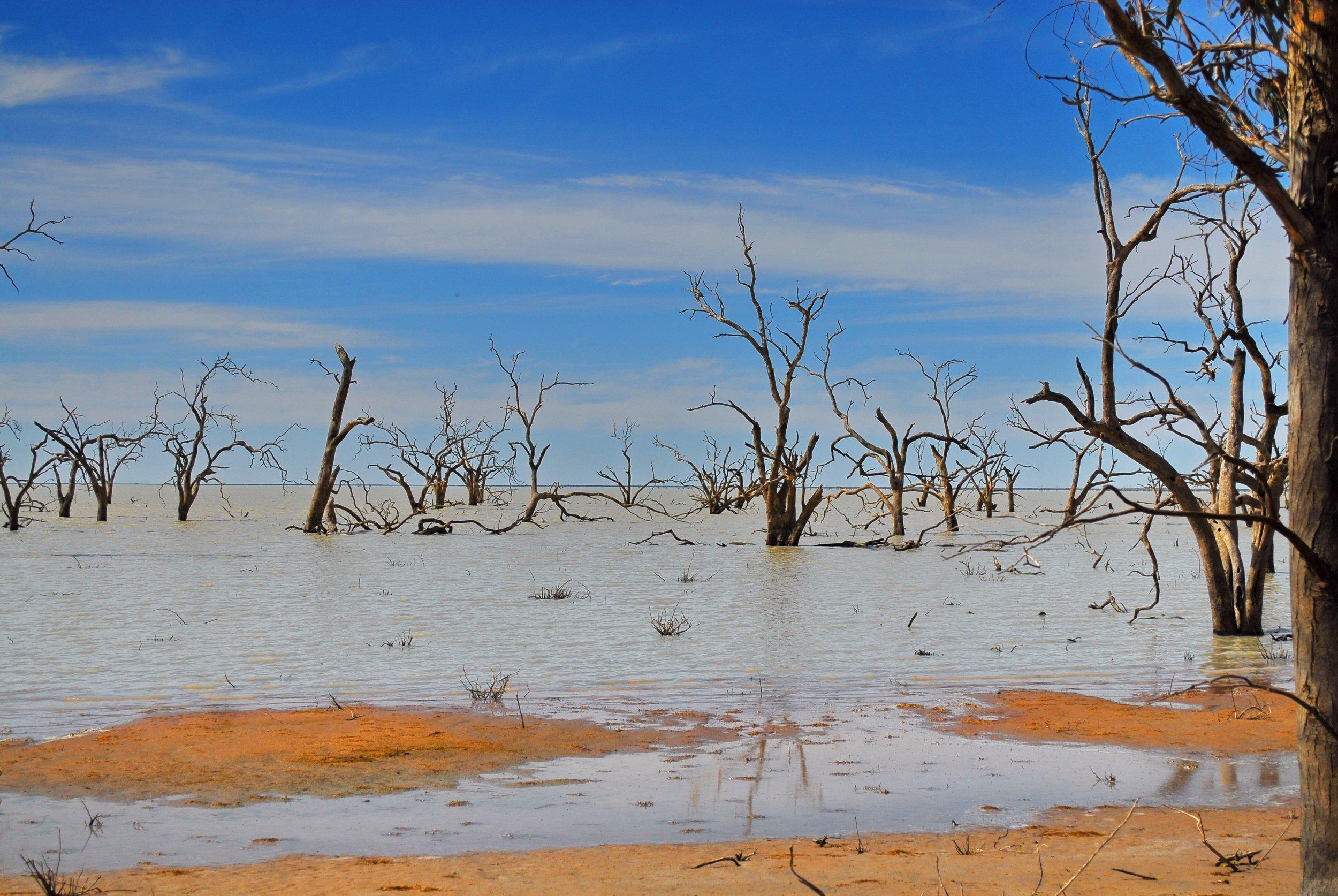 australia-lake-menindee-321174.jpg