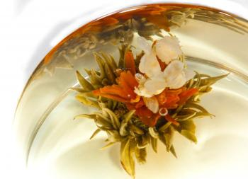 FLOWERING TEA BUDS