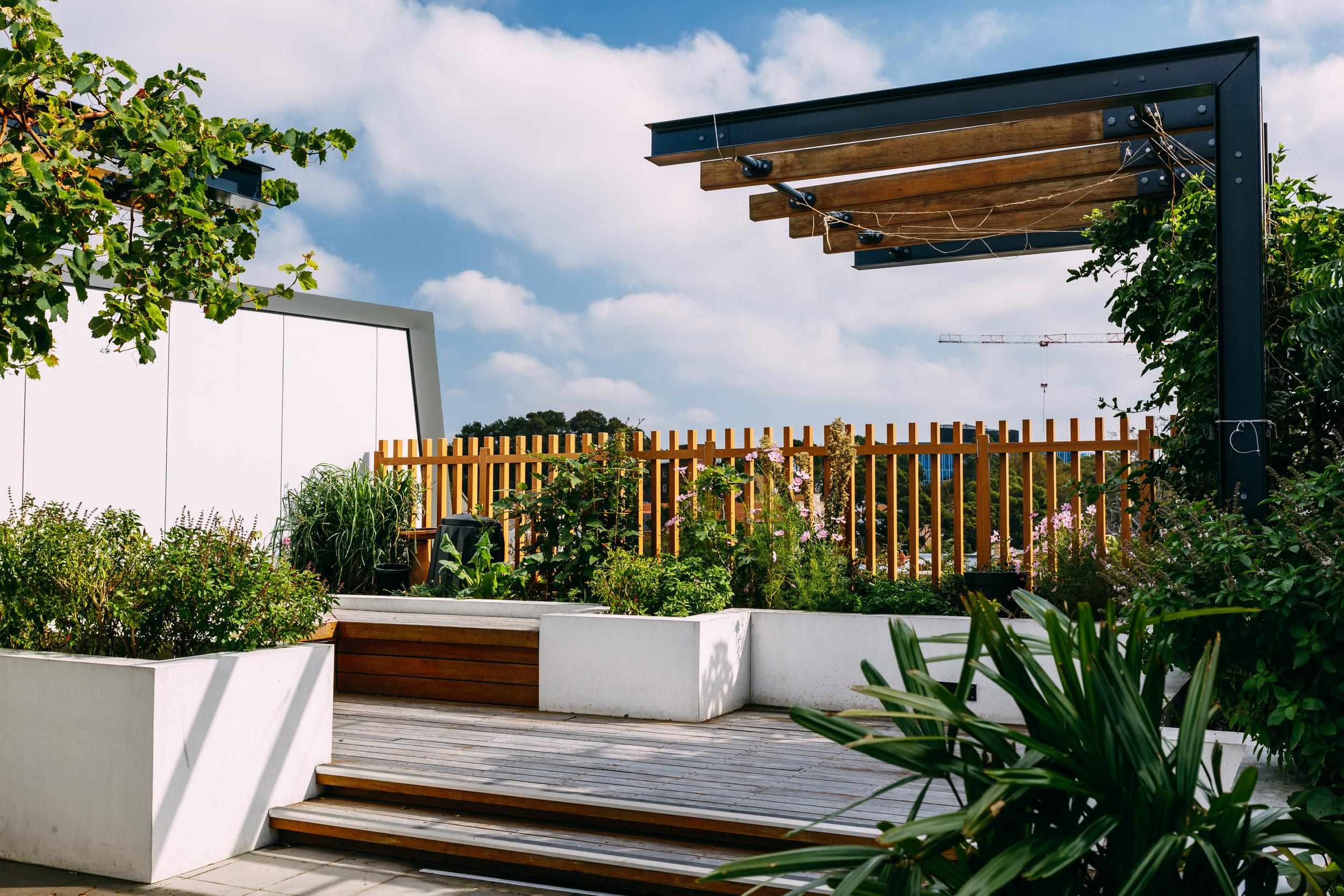 cwh_buildings_01010.jpg