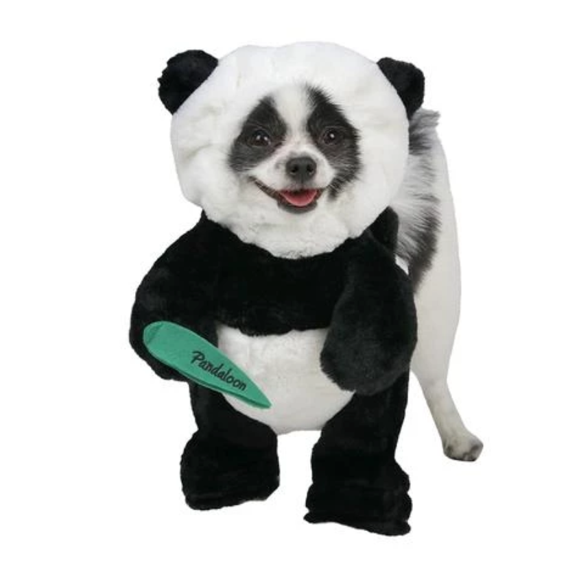 Panda Dog - Pandaloon Panda Dog Costume. This adorable costume will have everyone doing a double take...is it a pup or a panda? This full length hilarious hoodie costume is made with soft plush fabric and features reinforced feet as well as Velcro and drawstrings to give your dog the perfect fit. Your pup will be able to walk around in this costume with ease.Sizes available are small and medium.