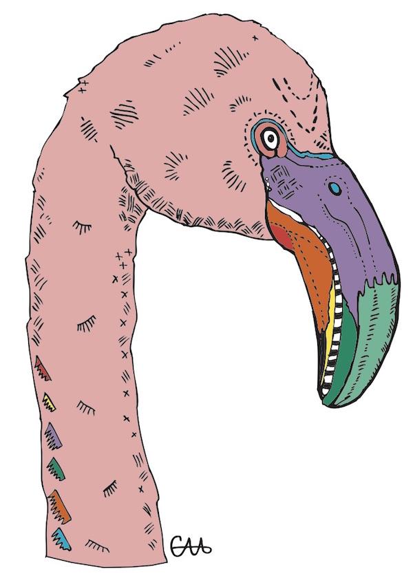 5x7 flamingo.jpg