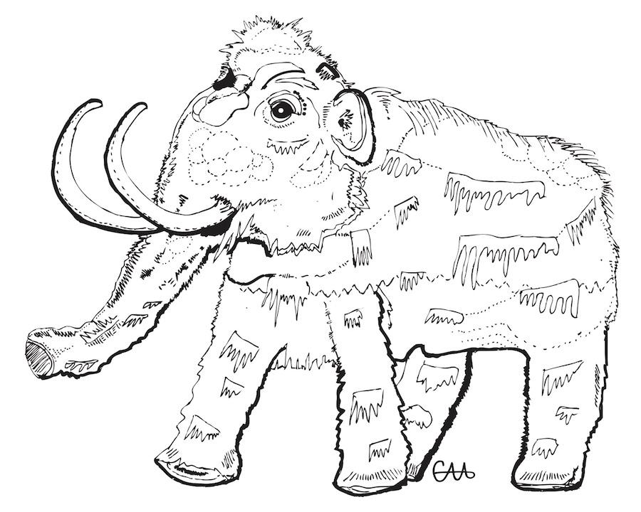 8x10 wooly mammoth BW.jpg