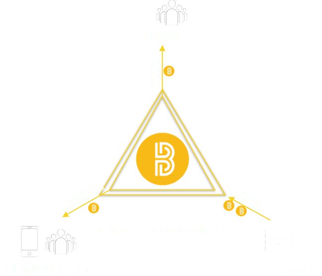 BioCoin Diagram.png