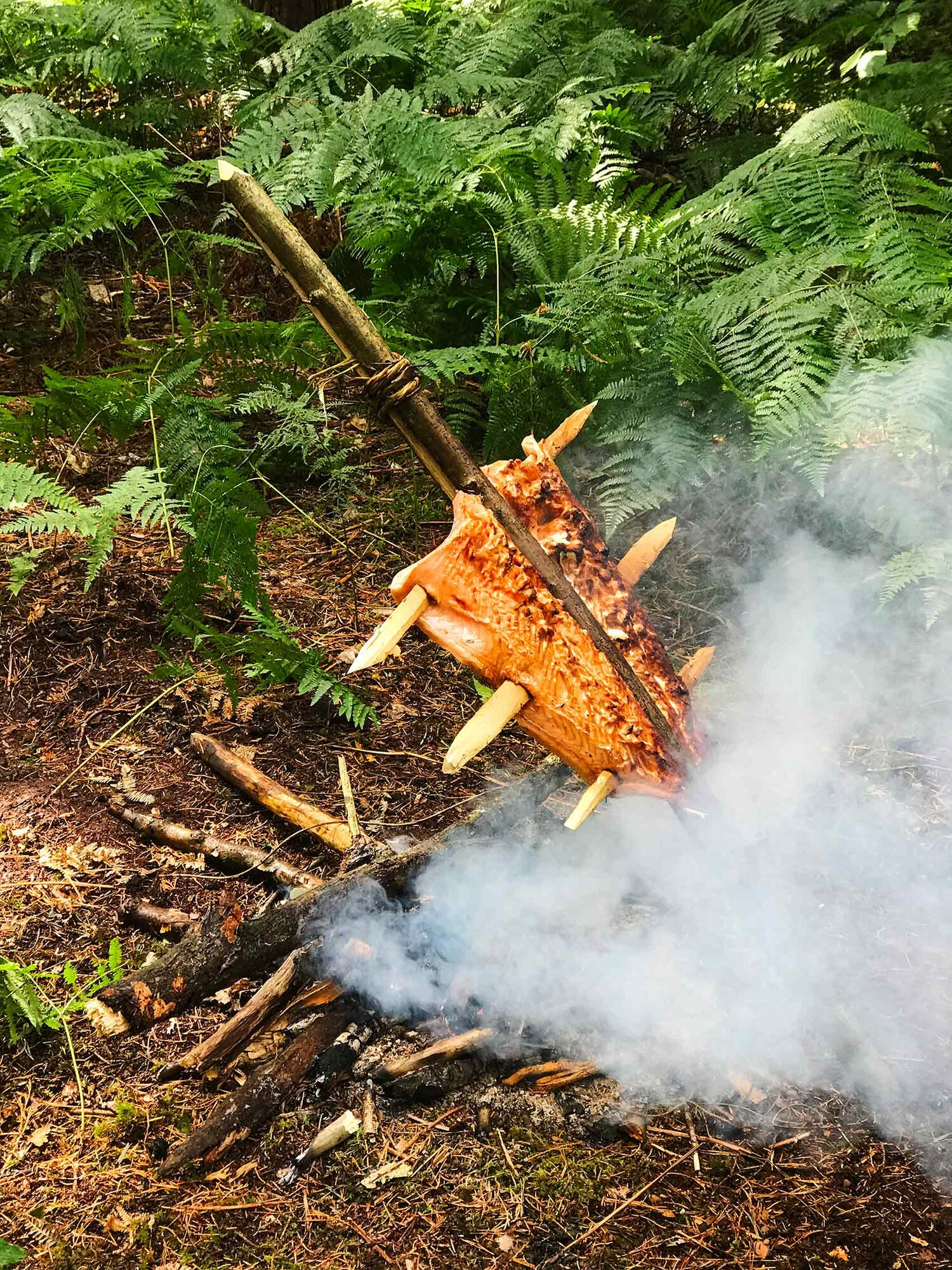 Getting the fire going in the rain.  A fresh wild salmon cooked over birch wood tastes fantastic, especially when you have been standing in the rain for a few hours.