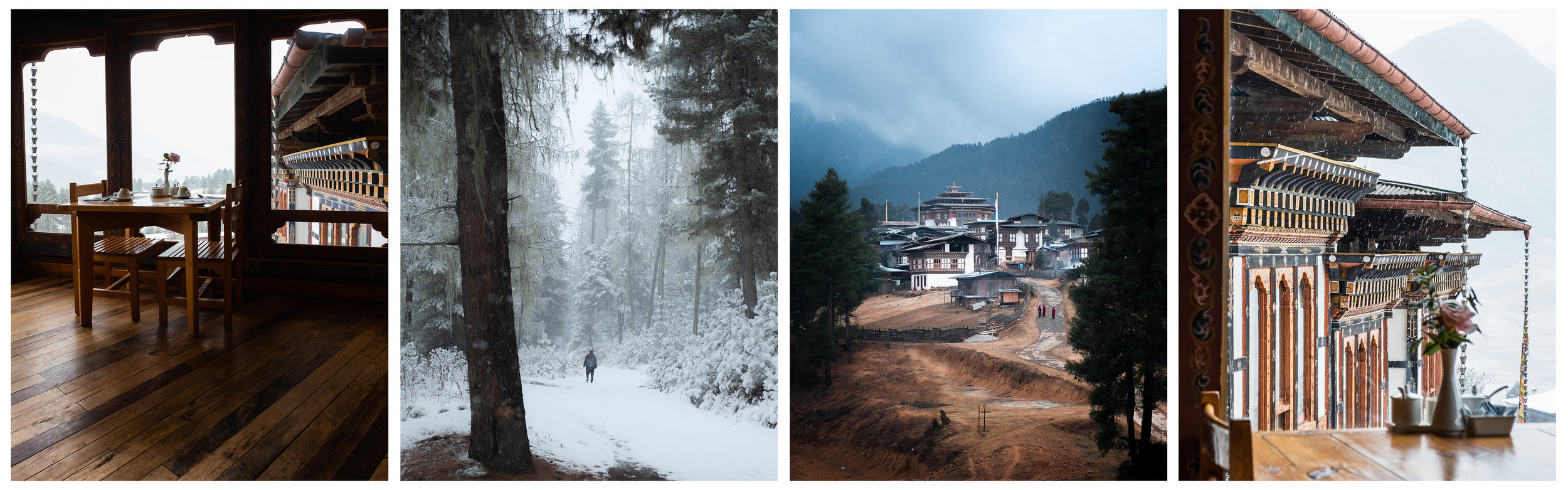 Breakfast hall, Snow covered pine forests, Gangtey Monastery, View from  Dewachen