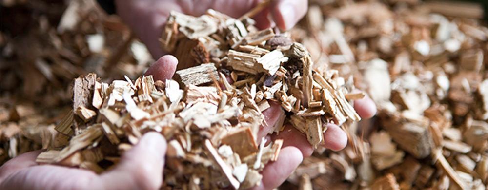 Woodchip Biomass