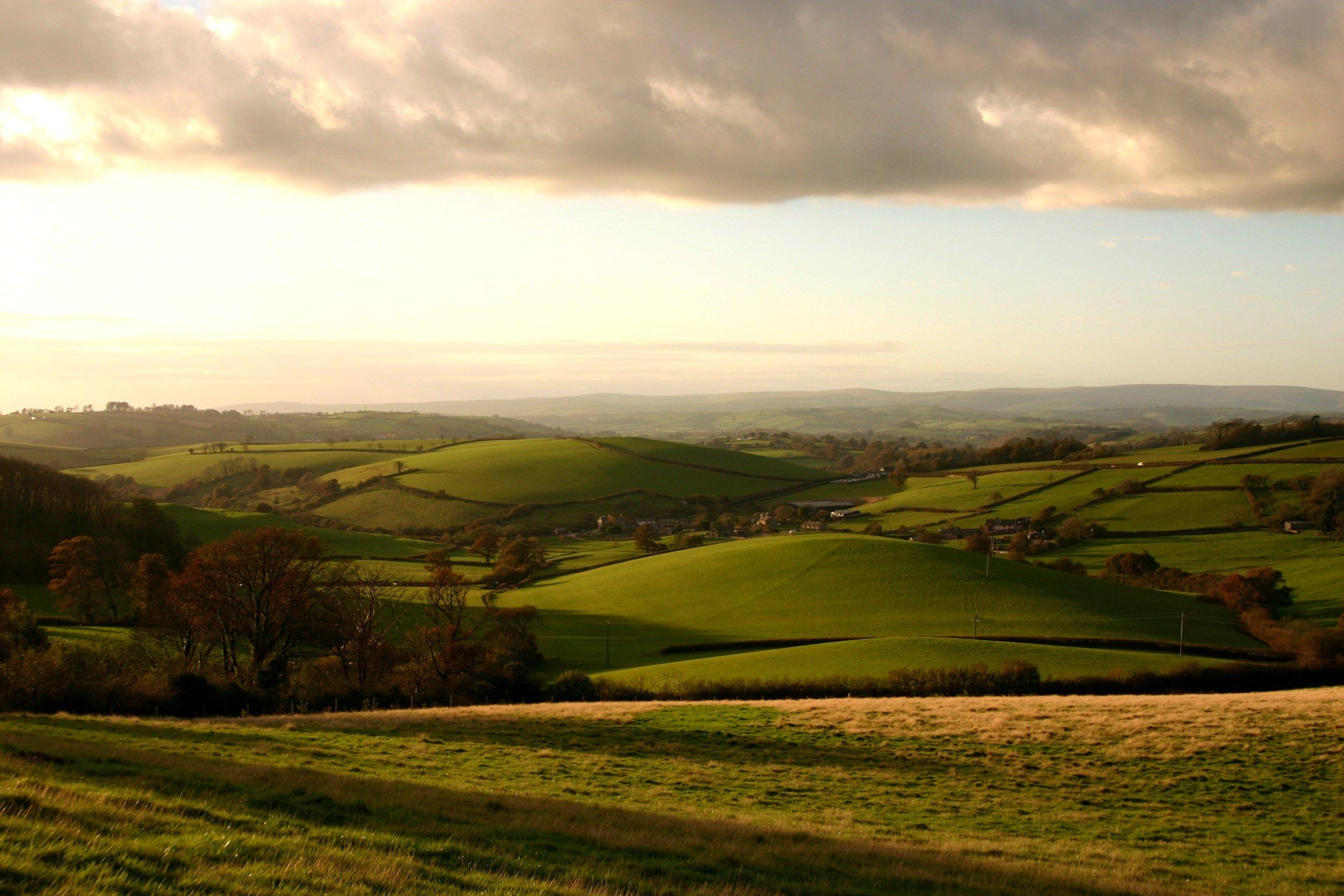 Devon Hills.jpg