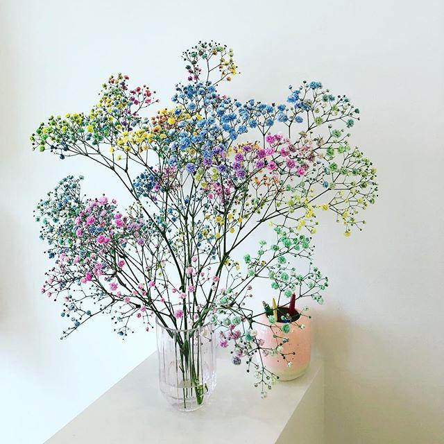 #tidligtforår 🌸🌈☀️ #blomster #frisør #glow #århusgade 6