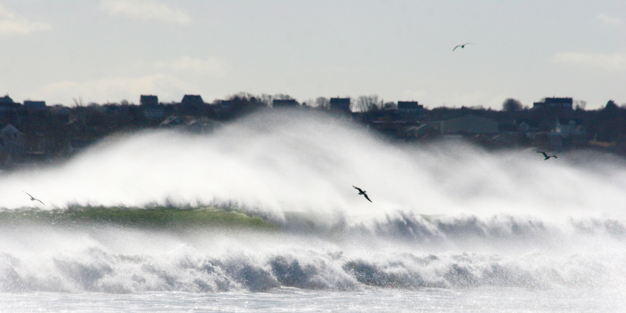 This picture was taken from somewhere between Town Beach and Scotch Beach, looking to town. The waves were a little big for swimming that day. Plus, it was February.