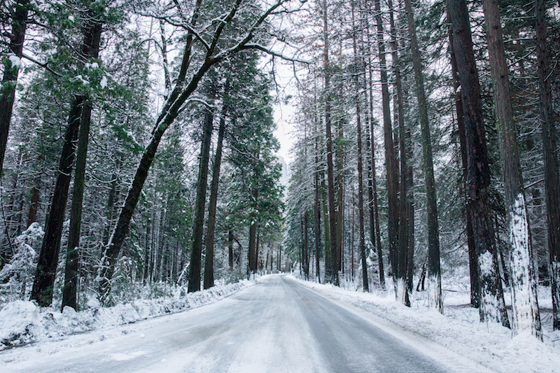 Road of Ice in Winter