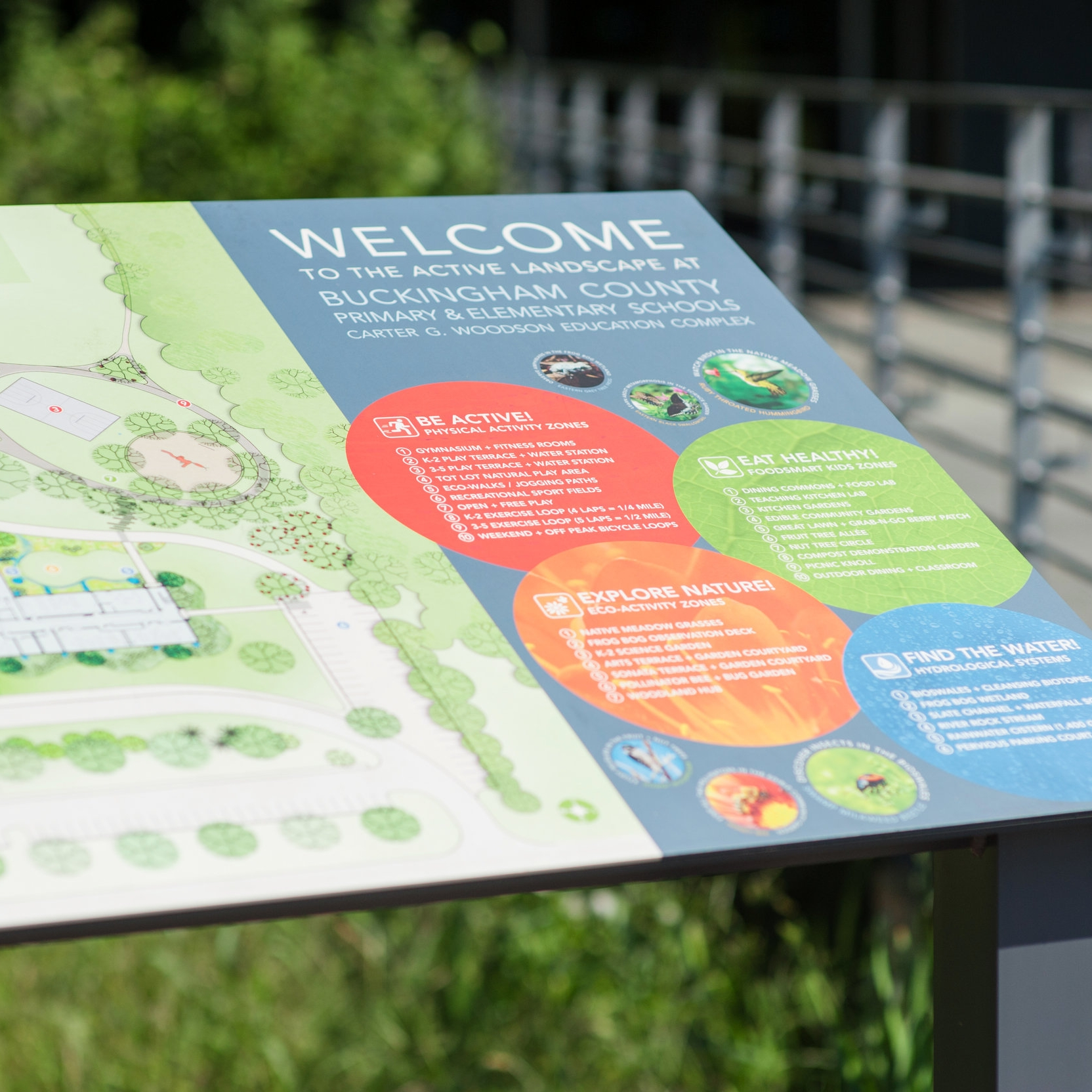 Buckingham Primary and Elementary Schools  Branded Environment