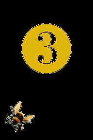 bee three.png