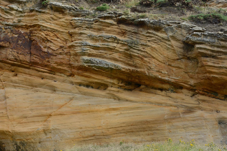 Cuente con nuestra asesoría en   Geología