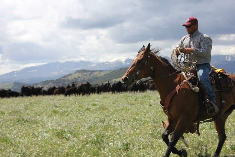 Retreats-Individuals-Horseback-riding