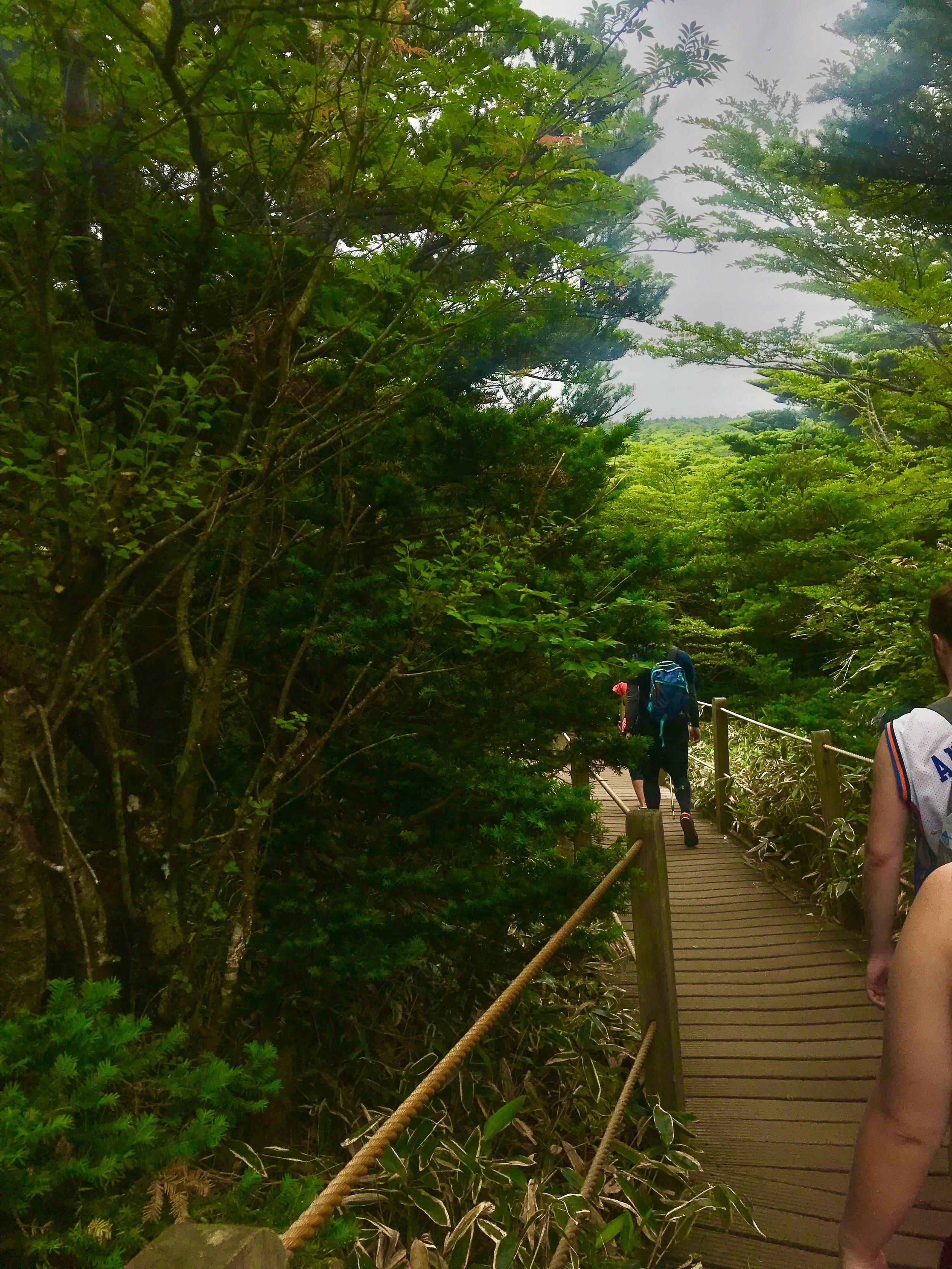 Seongpanak trail - Seongpanak trail