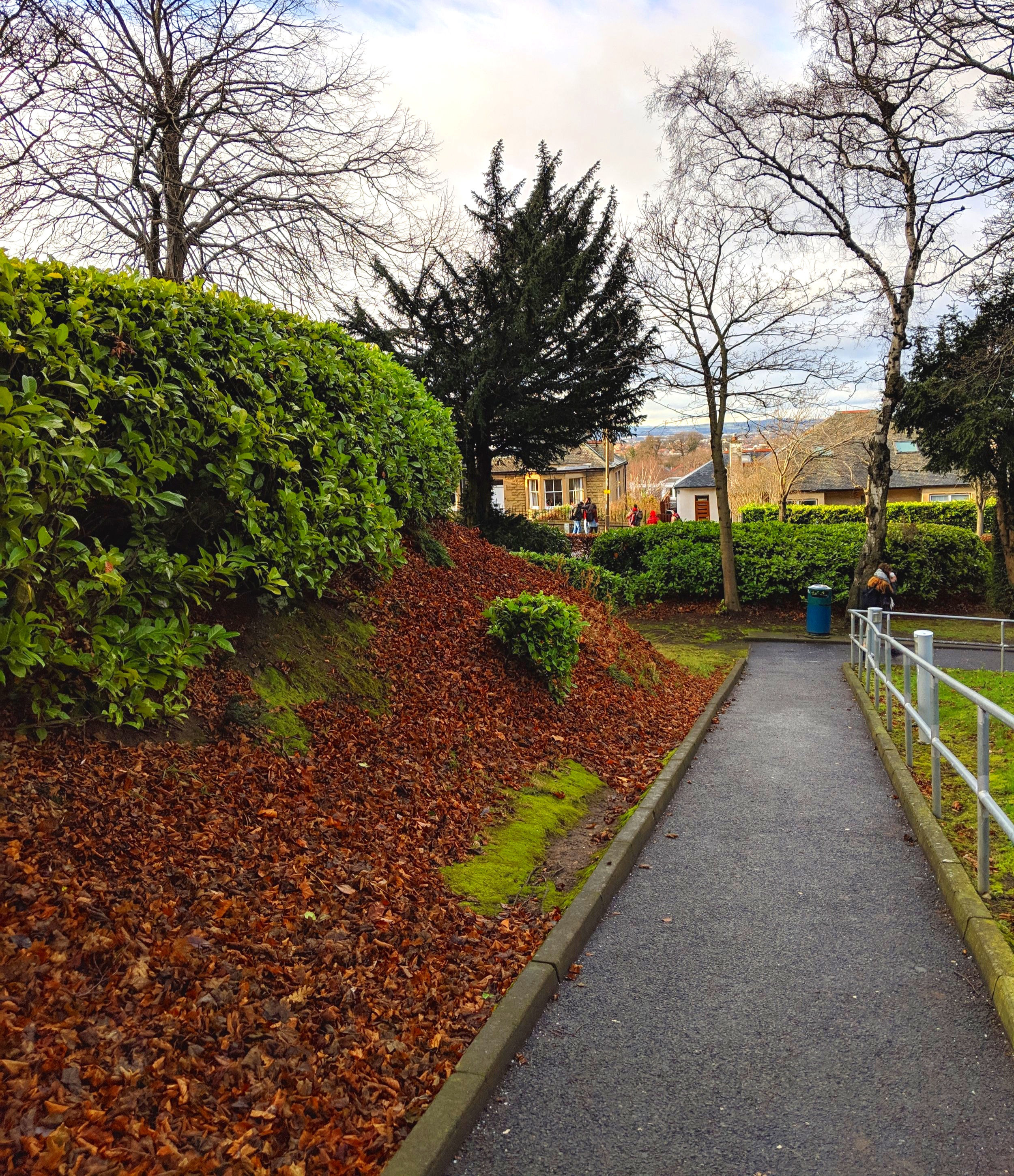 Path to the Campus