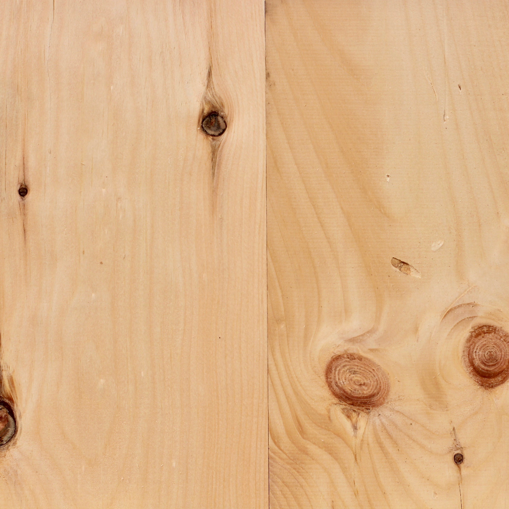 Eastern White Pine Tongue and Groove from Water's Edge Woods