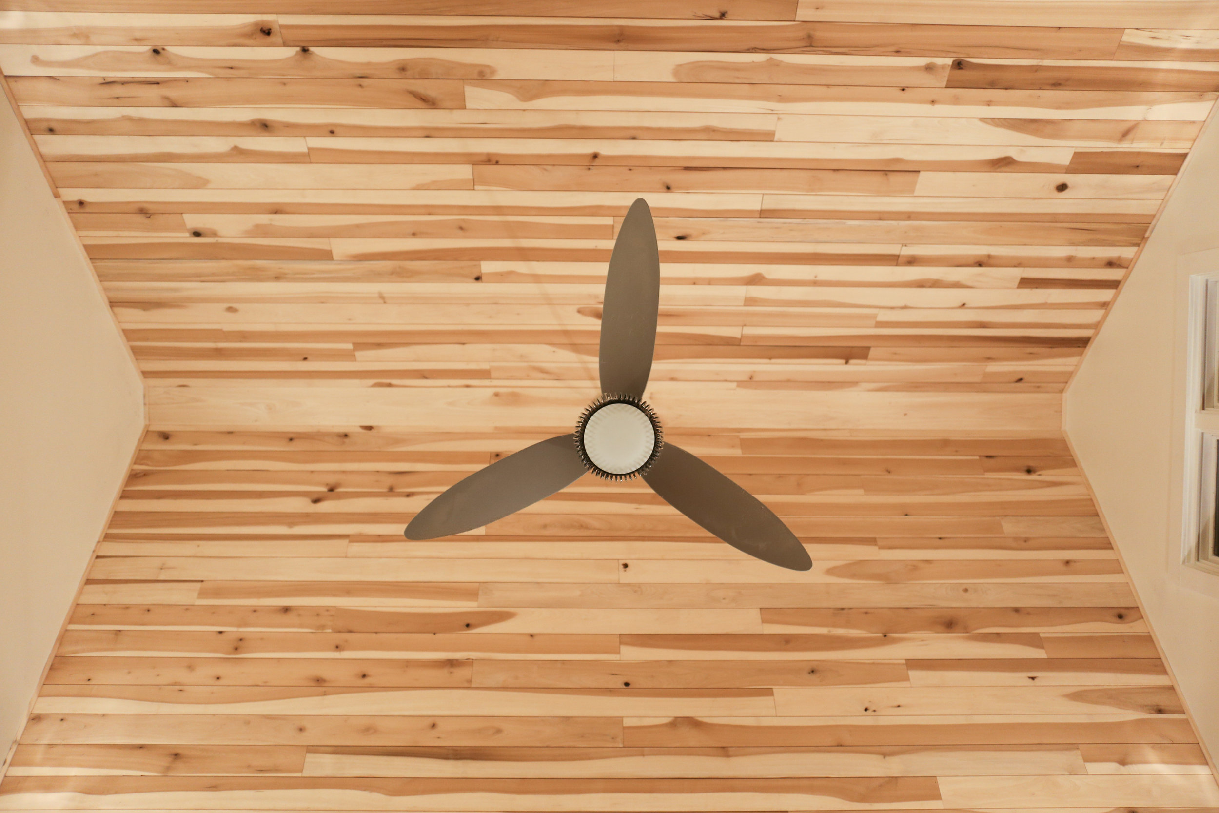 Poplar Wood Ceiling Water's Edge Woods