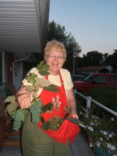 Dianne from Indianapolis