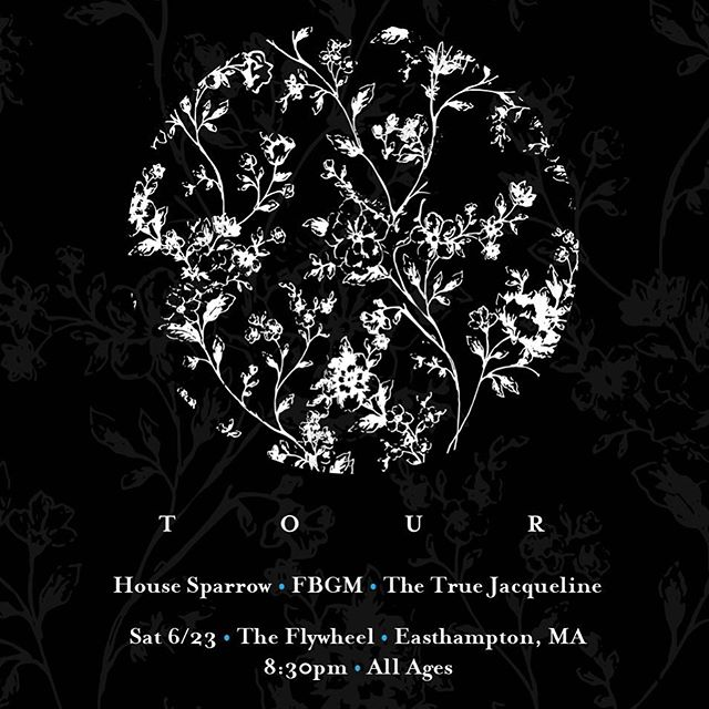 6/23 at @flywheel_arts w/ our buds @fbgmtheband and @thetruejackie  Live near Easthampton, get there! . . . . . . . #gig #indiefolk #musicband #synth #tenorguitar #spacefolk