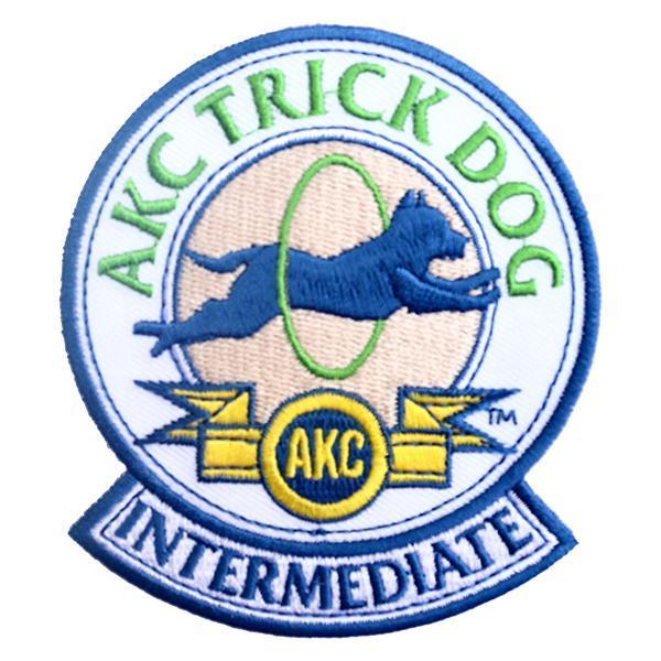 TrickDogIntermediatePatch.jpg