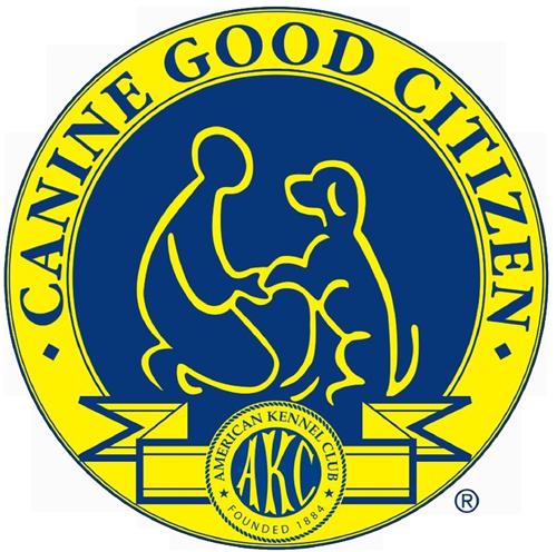 trans_cgc_logo.png