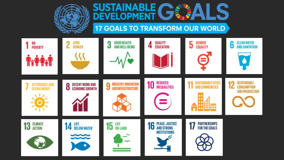 """The United Nations has 17 goals they want to accomplish that will transform our world. We would use these as the basis for the theme of which charity would be focused on each month. For example purposes, we are using, """"Life Below Water."""""""