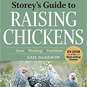 Story's Guide to Raising Chickens   Gail Damerow