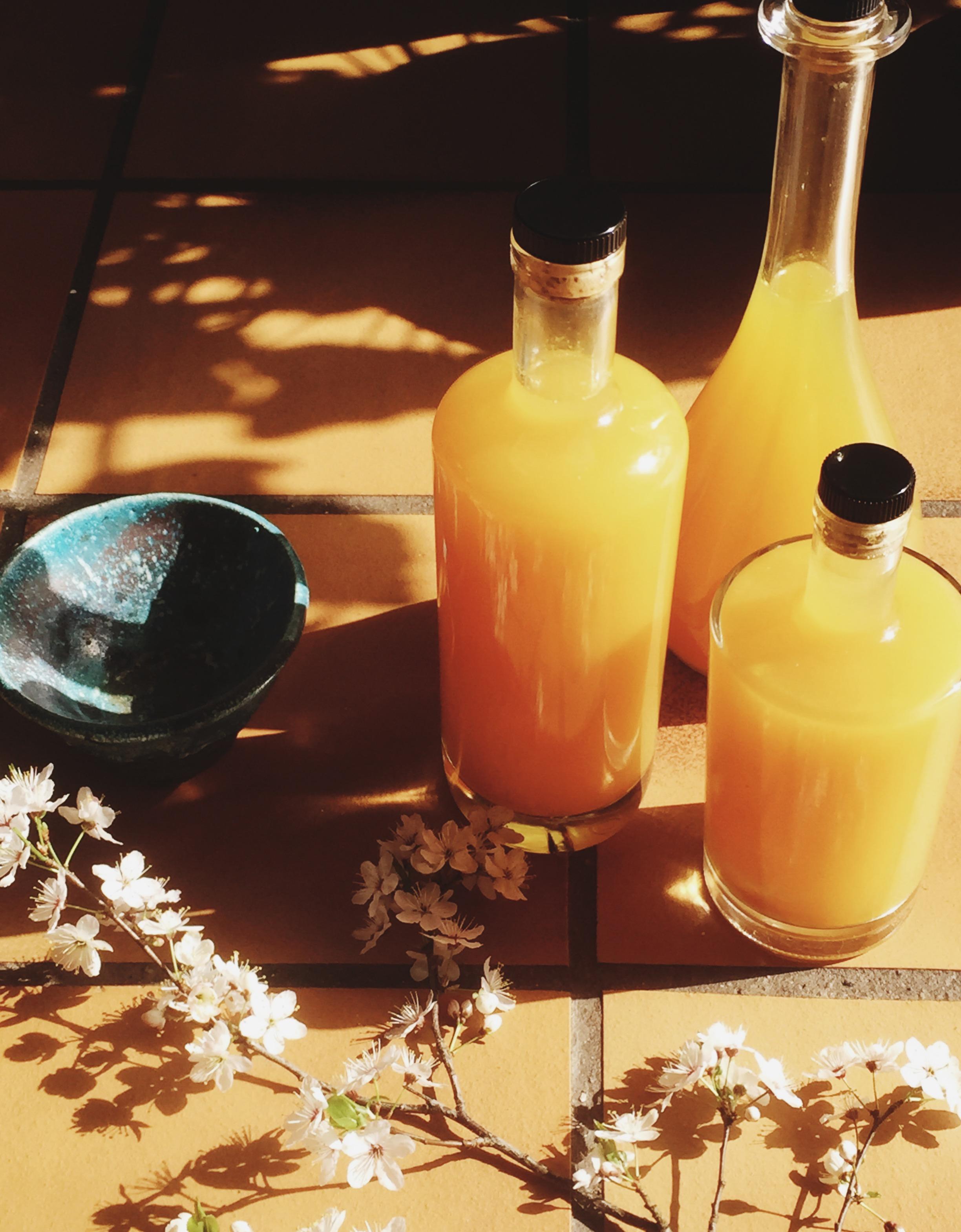 immunboostende tonic