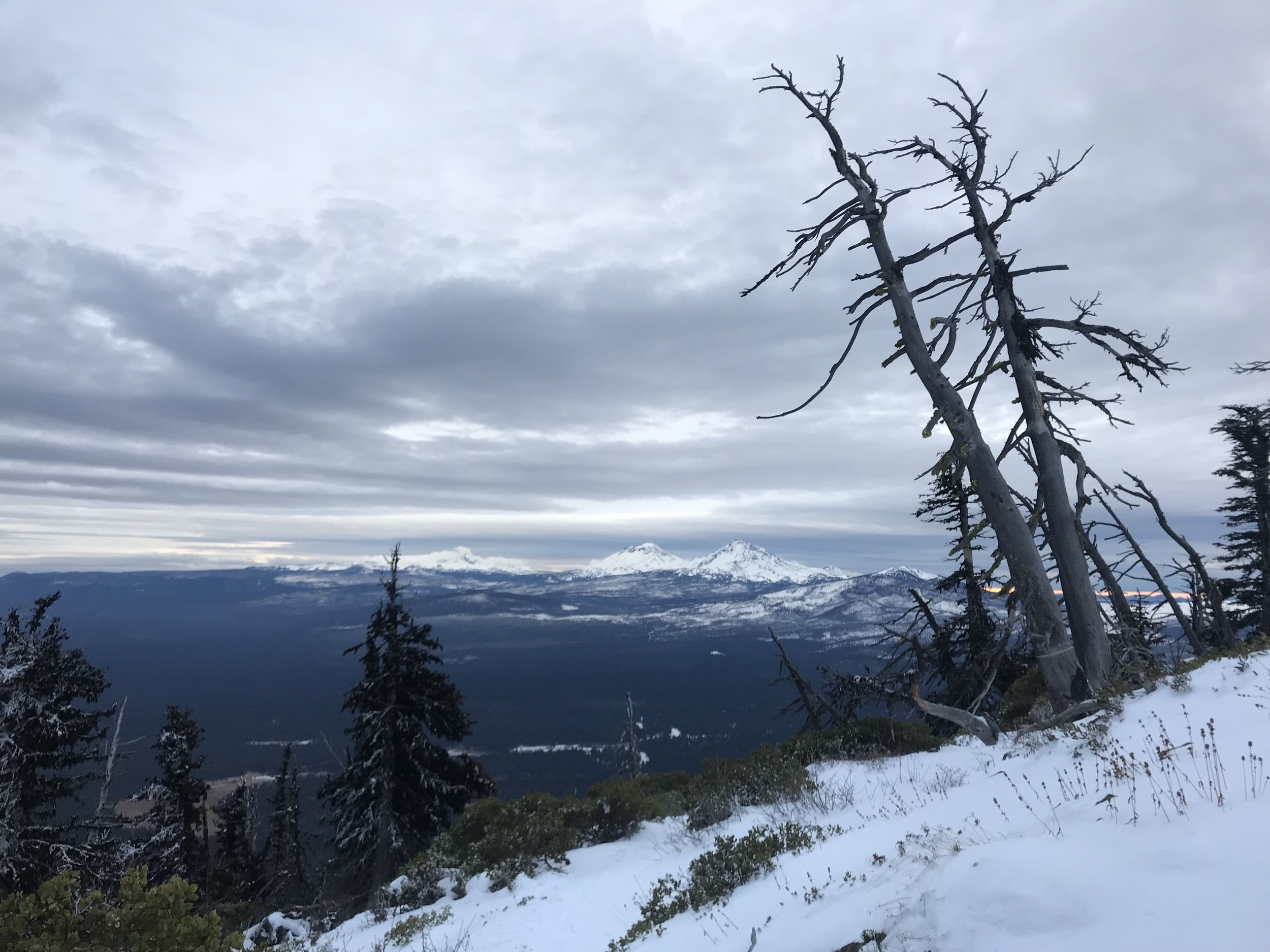 View of the Three Sisters mountain range from the top of Black Butte.