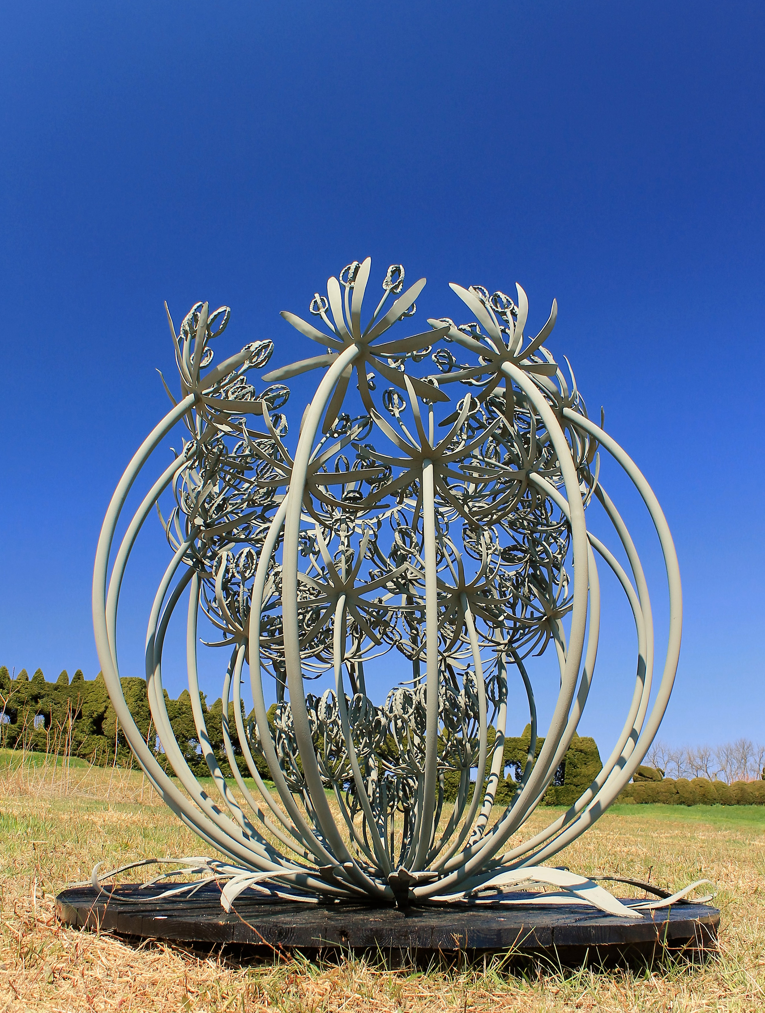 Queen Annes Lace Sculpture.jpg